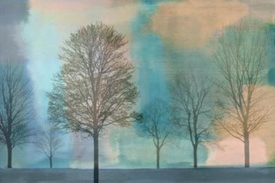 Misty Morning II by Chris Donovan