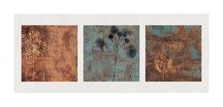 Dharma II-Chris Donovan-Giclee Print