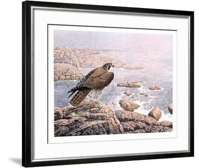 Falcon's Vigil