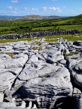 A View Towards Mullaghmore in the Burren, County Clare, Ireland by Chris Hill
