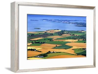 Fields in Late Summer Along North Down Strangford Lough, County Down, Northern Ireland