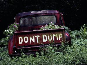 An Abandoned Vehicle Ironically Bears a Sign Warning against Dumping by Chris Johns
