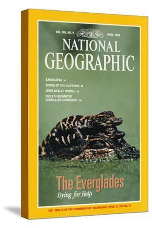 Cover of the April, 1994 National Geographic Magazine