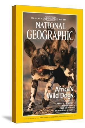 Cover of the May, 1999 National Geographic Magazine