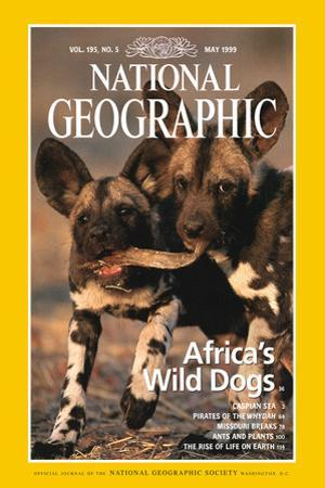 Cover of the May, 1999 National Geographic Magazine by Chris Johns