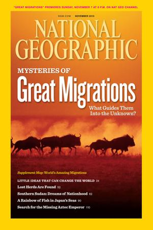 Cover of the November, 2010 National Geographic Magazine by Chris Johns