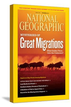 Cover of the November, 2010 National Geographic Magazine