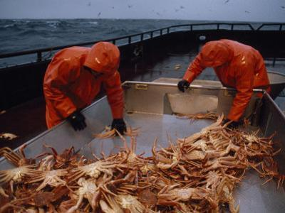 Crab Fishermen Sorting their Catch on the Deck by Chris Johns
