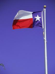 Texas State Flag by Chris Minerva