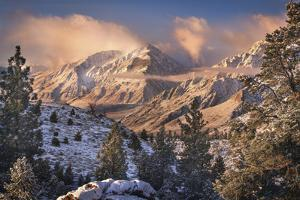 Mountain Light by Chris Moore