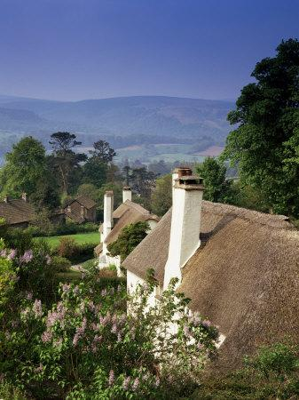 Thatched Cottages at Selworthy Green, with Exmoor Beyond, Somerset, England, United Kingdom