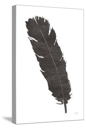 Black Feather V by Chris Paschke