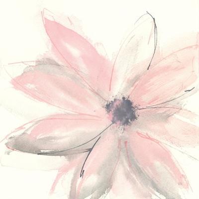 Blush Clematis I by Chris Paschke