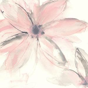 Blush Clematis II by Chris Paschke