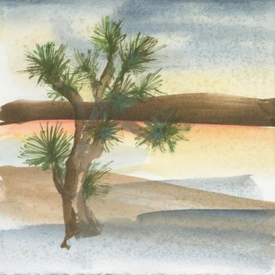 Desert Joshua Tree by Chris Paschke