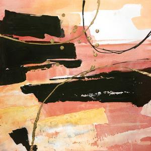 Desert Sunset 1 by Chris Paschke
