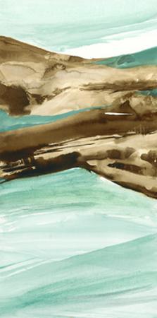 Driftwood 6 by Chris Paschke