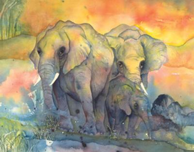 Elephants by Chris Paschke