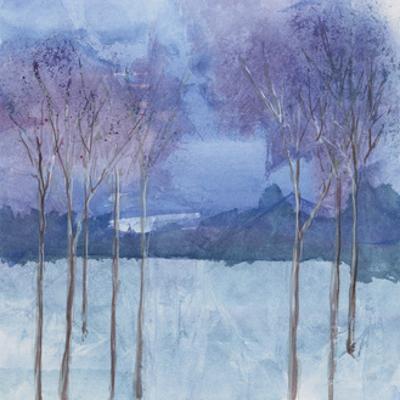 Evening Serenade II by Chris Paschke