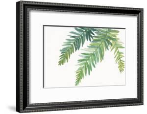 Ferns I Square by Chris Paschke
