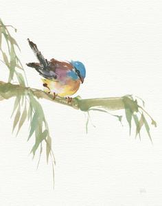Finch v2 by Chris Paschke