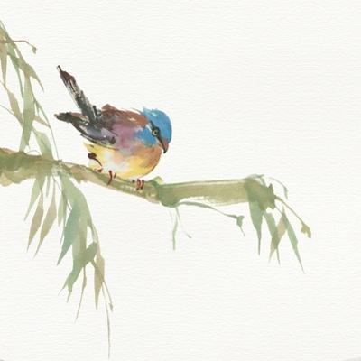 Finch by Chris Paschke