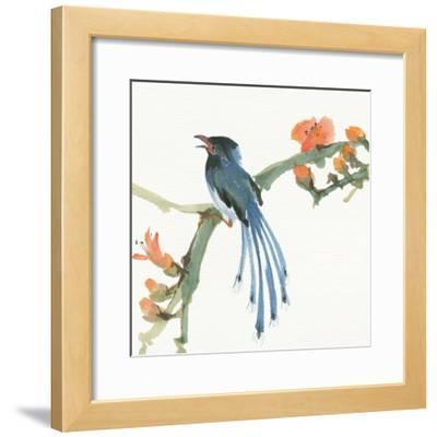 Formosan Blue Magpie by Chris Paschke