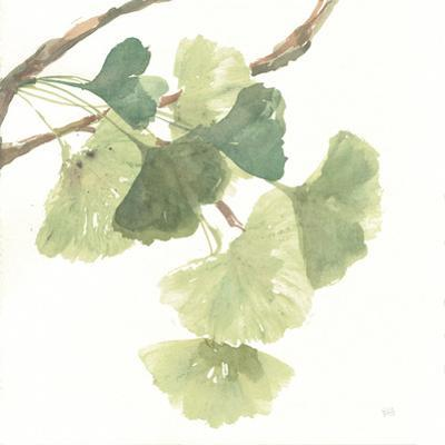 Gingko Leaves I on White by Chris Paschke