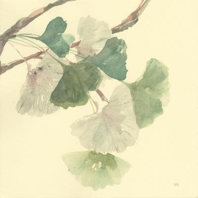 Gingko Leaves I by Chris Paschke