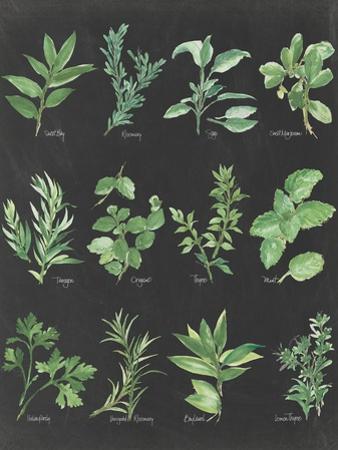 Herb Chart on Black by Chris Paschke