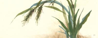 Horizontal Grass II by Chris Paschke