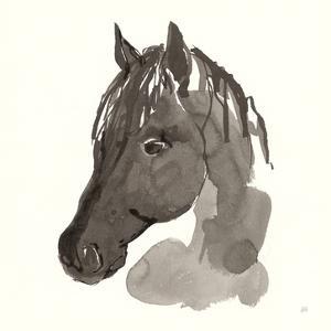 Horse Portrait II by Chris Paschke
