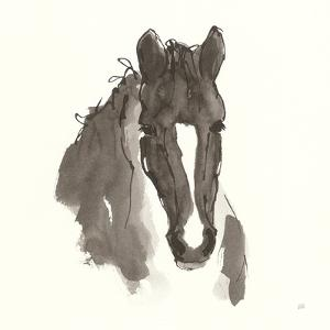 Horse Portrait III by Chris Paschke