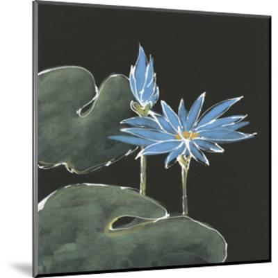 Lily on Black V by Chris Paschke