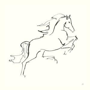 Line Horse VI by Chris Paschke
