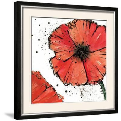 Not a California Poppy on White IV by Chris Paschke