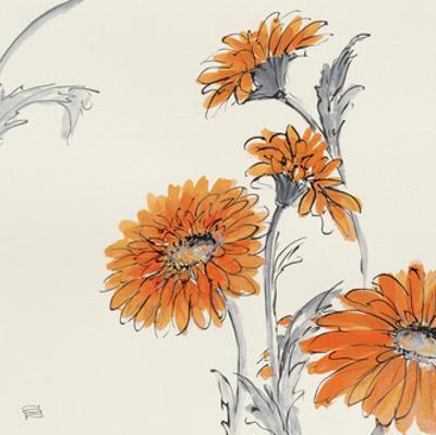 Orange Gerbera I by Chris Paschke