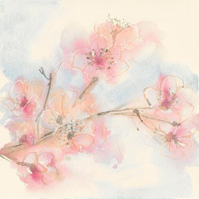 Pink Blossoms II by Chris Paschke