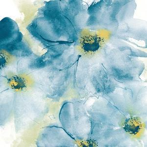 Seashell Cosmos I Blue and Yellow by Chris Paschke
