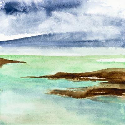 Shore II by Chris Paschke