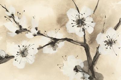 Spring Blossoms I by Chris Paschke