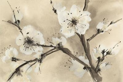 Spring Blossoms III by Chris Paschke