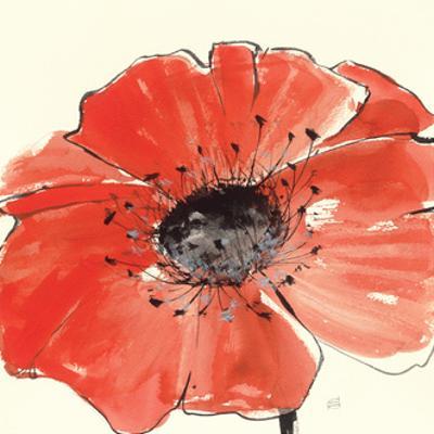 Spring Poppy IV by Chris Paschke