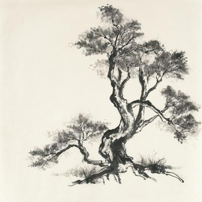 Sumi Tree I by Chris Paschke