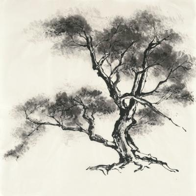 Sumi Tree II by Chris Paschke
