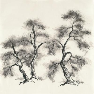 Sumi Tree III by Chris Paschke