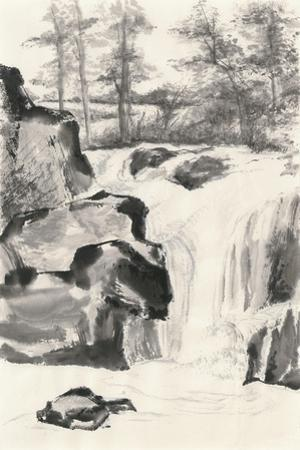 Sumi Waterfall I by Chris Paschke