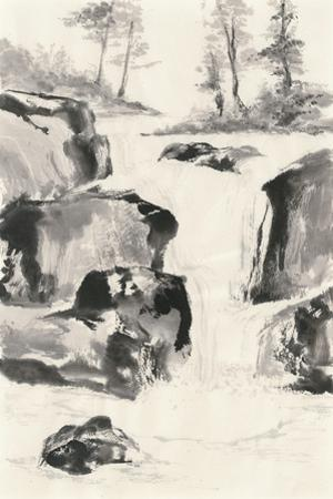 Sumi Waterfall II by Chris Paschke