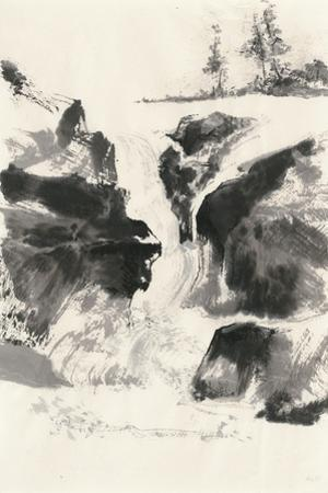 Sumi Waterfall V by Chris Paschke