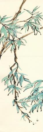 Summer Bamboo II by Chris Paschke